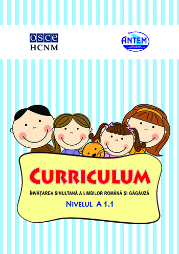 CURRICULUM ROM.cdr
